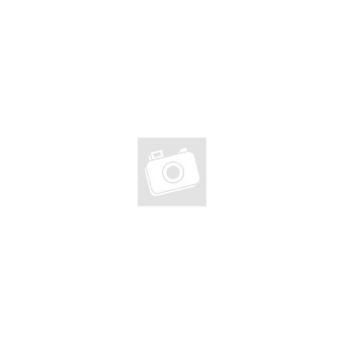 EFI-4A 100A 100mA áram-védőkapcsoló